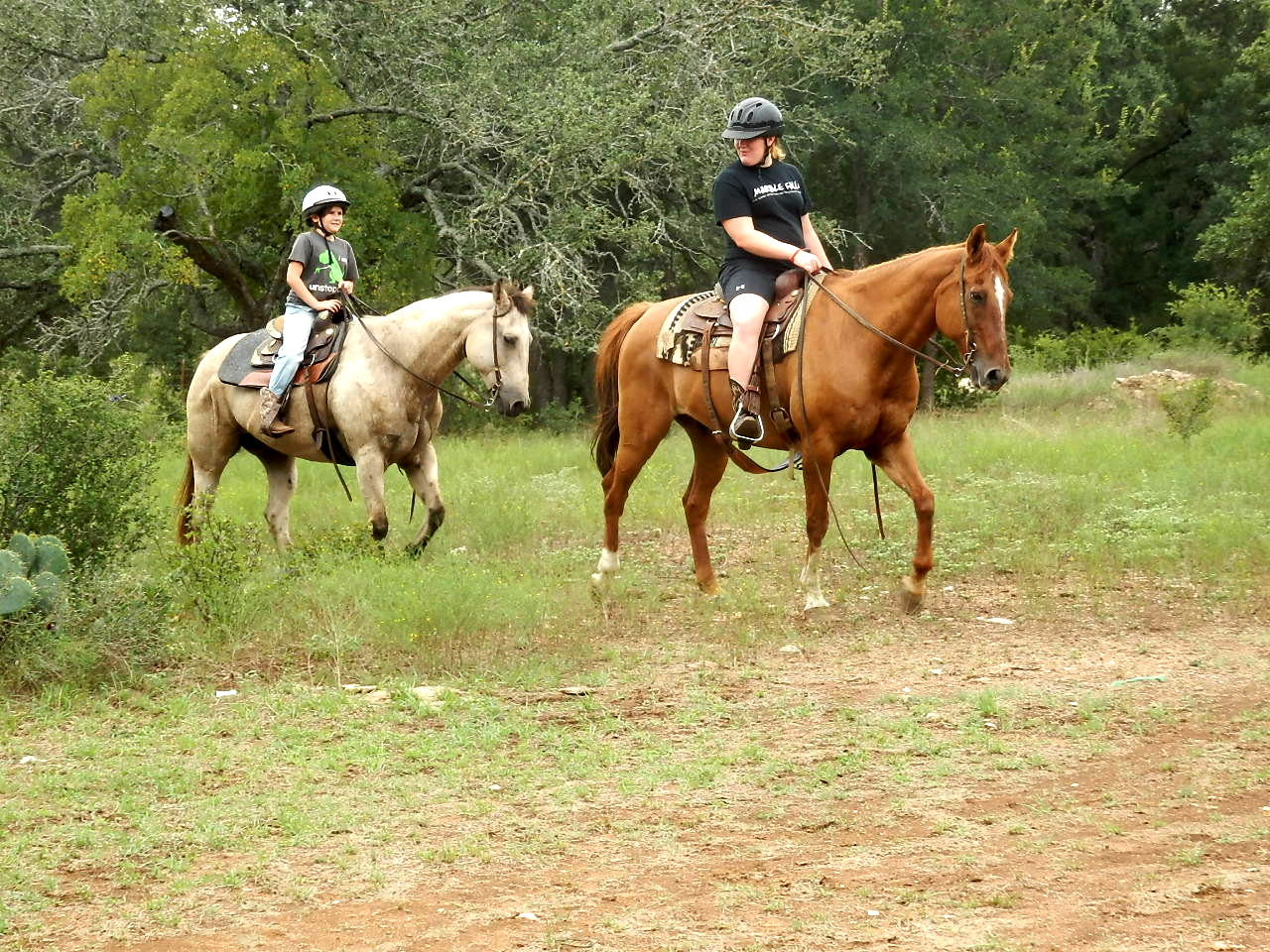Happiness is out for a safe ride on a good horse with a good friend!