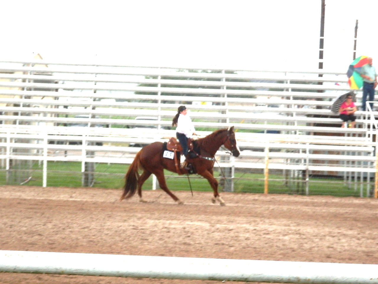 Our Michala and her horse Latte doing her patterns.